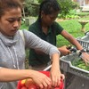 """Clarkston High Youth Food Justice Interns share their first podcast, """"Garden Life"""""""